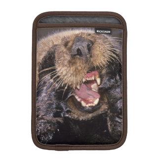 Sea Otters, Enhydra lutris 6 Sleeve For iPad Mini