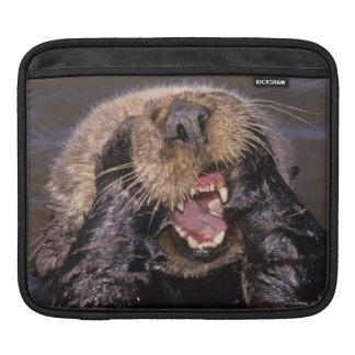 Sea Otters, Enhydra lutris 6 Sleeve For iPads