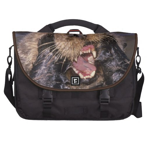 Sea Otters, Enhydra lutris 6 Bags For Laptop