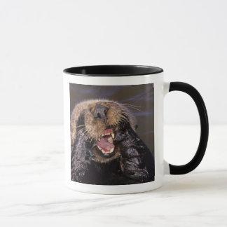Sea Otters, Enhydra lutris 6 Mug