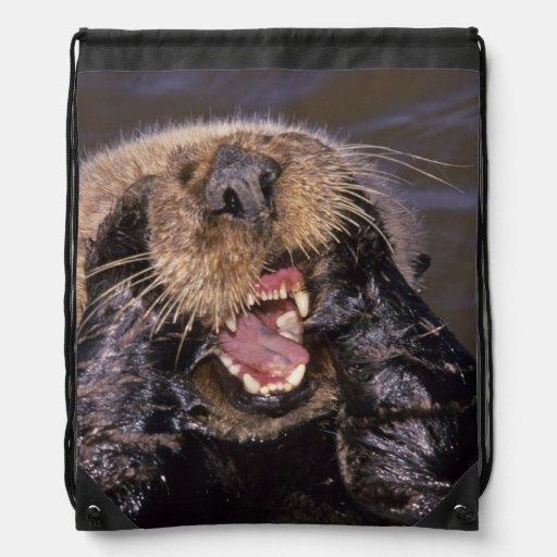 Sea Otters, Enhydra lutris 6 Cinch Bag