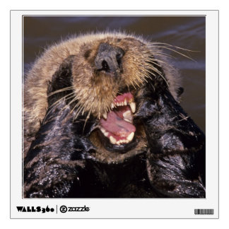 Sea Otters, Enhydra lutris 6 Wall Sticker