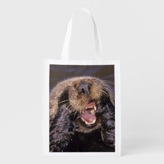 Sea Otters, Enhydra lutris 6 Reusable Grocery Bags