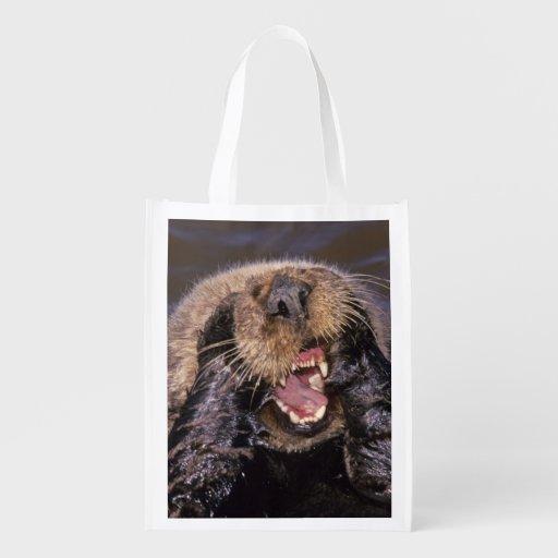 Sea Otters, Enhydra lutris 6 Grocery Bag