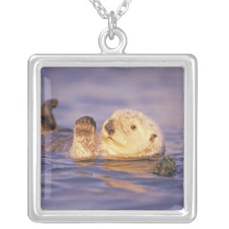 Sea Otters, Enhydra lutris Silver Plated Necklace