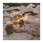 Sea Otters Holding Hands Canvas Print