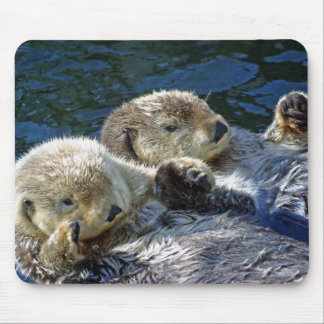 Sea-otters Mouse Pad