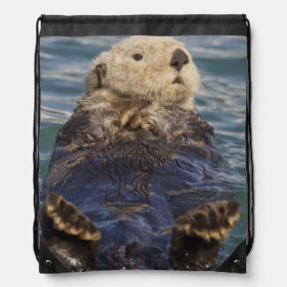 Sea otters play on icebergs at Surprise Inlet Drawstring Bag