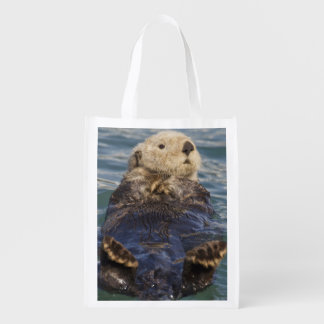 Sea otters play on icebergs at Surprise Inlet Grocery Bag