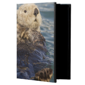 Sea otters play on icebergs at Surprise Inlet iPad Air Case