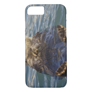 Sea otters play on icebergs at Surprise Inlet iPhone 8/7 Case