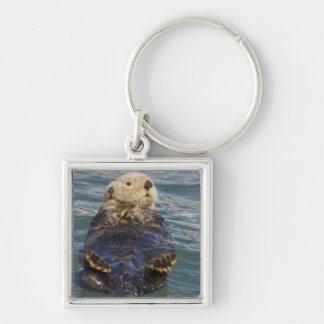 Sea otters play on icebergs at Surprise Inlet Keychain
