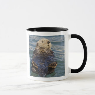 Sea otters play on icebergs at Surprise Inlet Mug