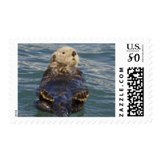 Sea otters play on icebergs at Surprise Inlet Postage