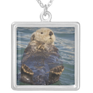 Sea otters play on icebergs at Surprise Inlet Silver Plated Necklace
