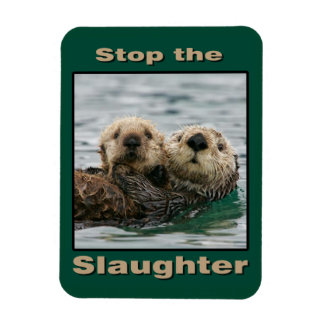 Sea Otters - Stop the Slaughter Magnet