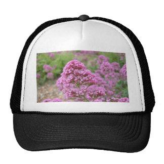 Sea Pink Hat