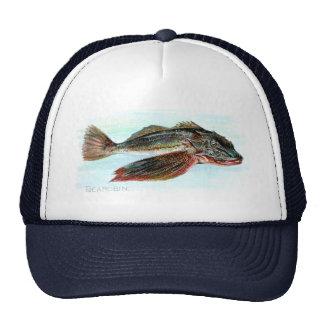 Sea Robin Trucker Hat