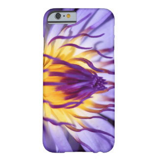 Sea-rose wraps purple barely there iPhone 6 case