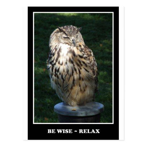 Sea sabio - relaje la postal de motivación
