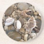 Sea Shell Background Beverage Coasters