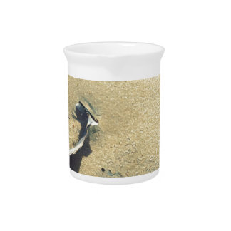 Sea Shell Gifts Drink Pitcher