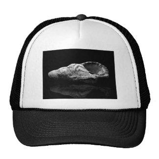 Sea Shell Hat/Cap Trucker Hat