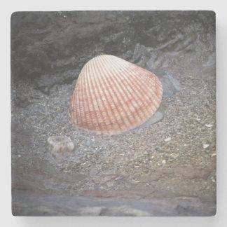 Sea Shell in Sand Stone Coaster