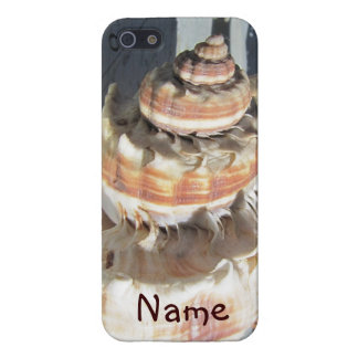 Sea Shell iPhone 5 Glossy Case