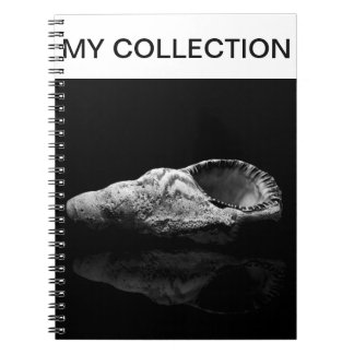 Sea Shell My Collection Note Book