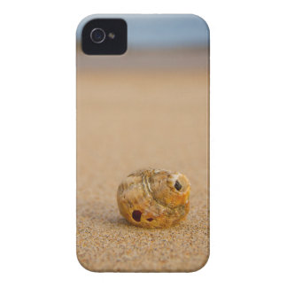 Sea Shell on the Beach Case-Mate iPhone 4 Case