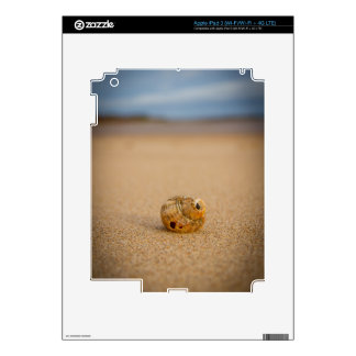 Sea Shell on the Beach Decals For iPad 3