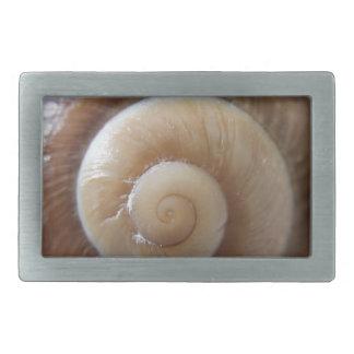 sea shell photograph rectangular belt buckle
