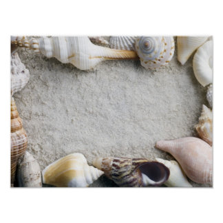 Sea Shell Sand Background - Beach Shells Customize Poster