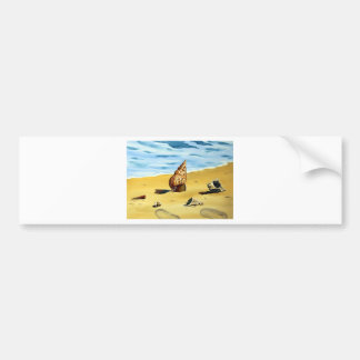 Sea Shell Series VII Bumper Sticker