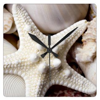 Sea Shell Starfish Background - Beach Shells Square Wall Clock