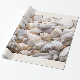 Sea Shell & Starfish Background - Beach Shells Wrapping Paper