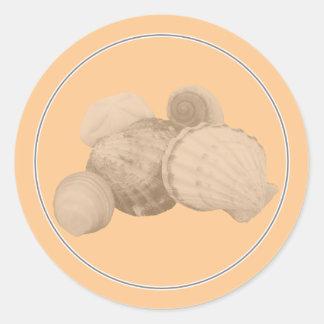 Sea Shell Sticker