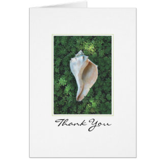 Sea Shell Thank You Note Card