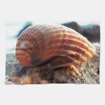 Sea Shell Towels