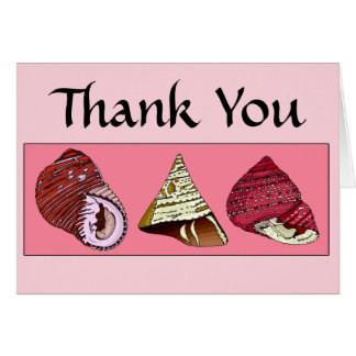 Sea Shells 1 Thank You Note Cards