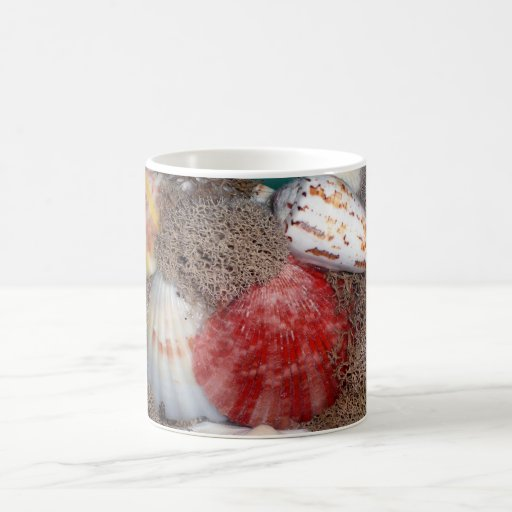 Sea Shells 3 Mug