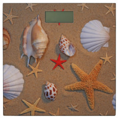Sea Shells And Starfish Arranged On Sand Bathroom Scale at Zazzle