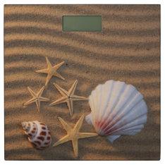 Sea Shells And Starfish Bathroom Scale at Zazzle