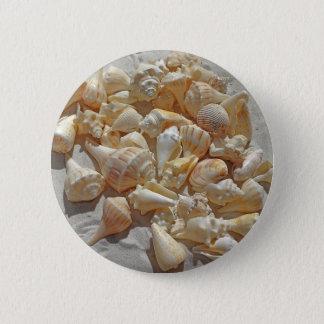 sea-shells bg button