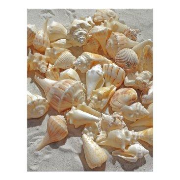 Beach Themed sea-shells bg letterhead