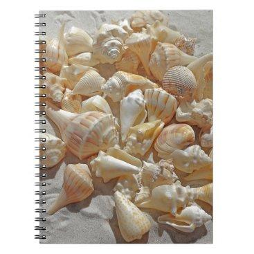 Beach Themed sea-shells bg notebook