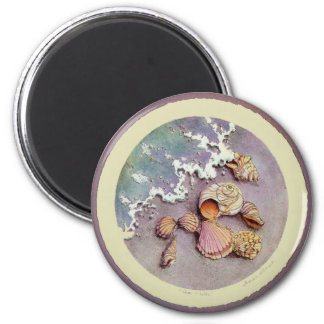 SEA SHELLS by SHARON SHARPE 2 Inch Round Magnet