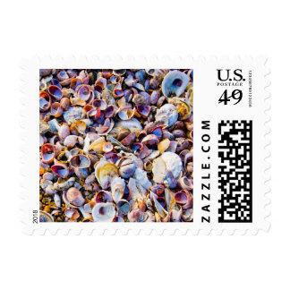Sea Shells By The Sea Shore Postage
