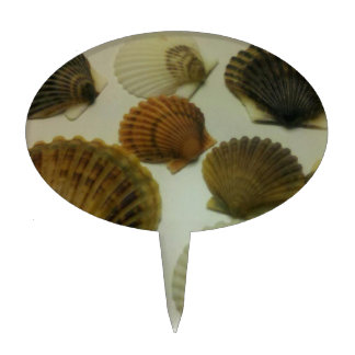 Sea Shells Cake Toppers